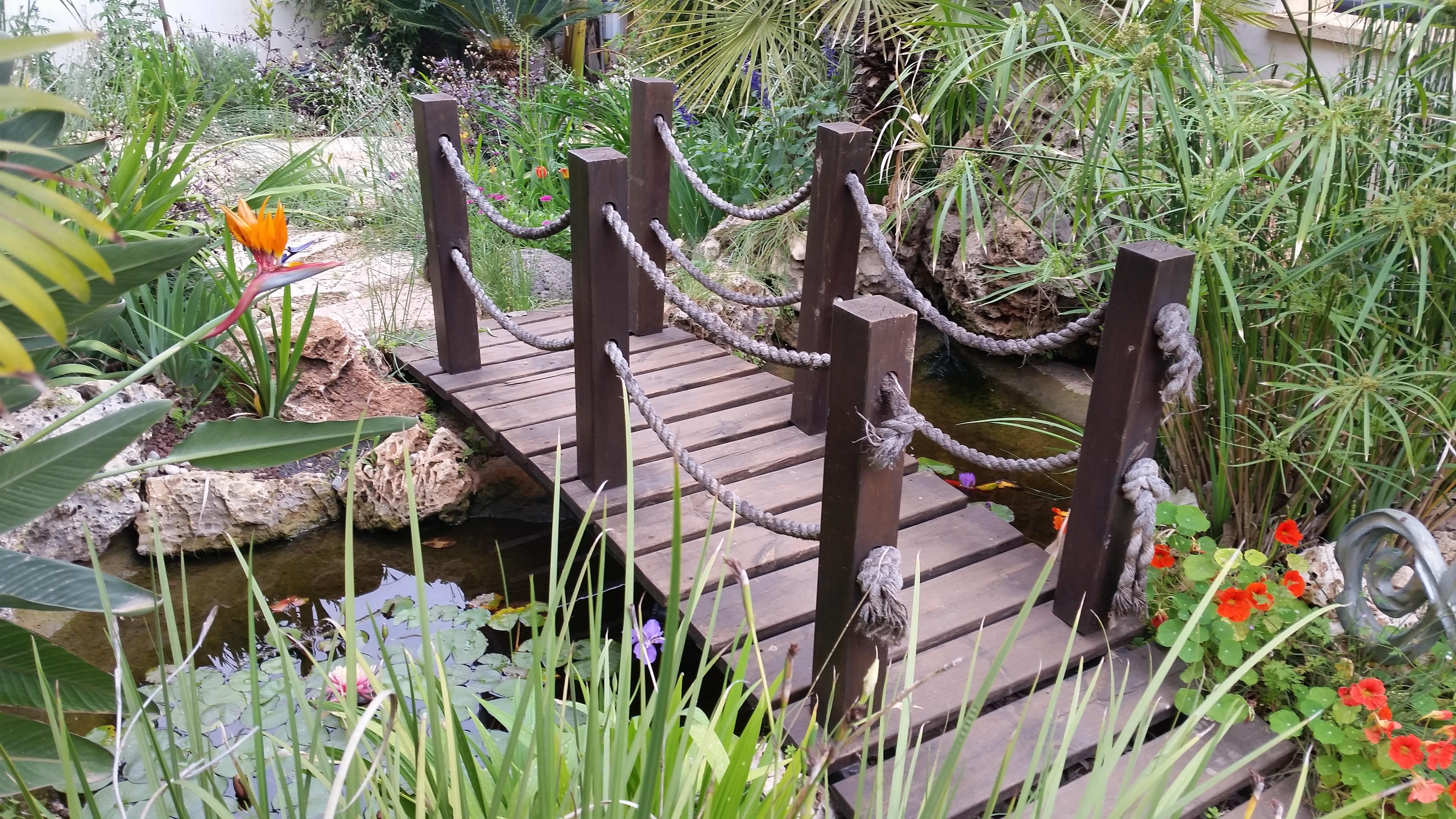 גשר עץ מעל בריכת נוי