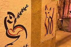 רונית הבר יום ההשראה הבינלאומי אילונה צי