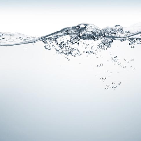 Be water, my friend...Adáptate a la vida