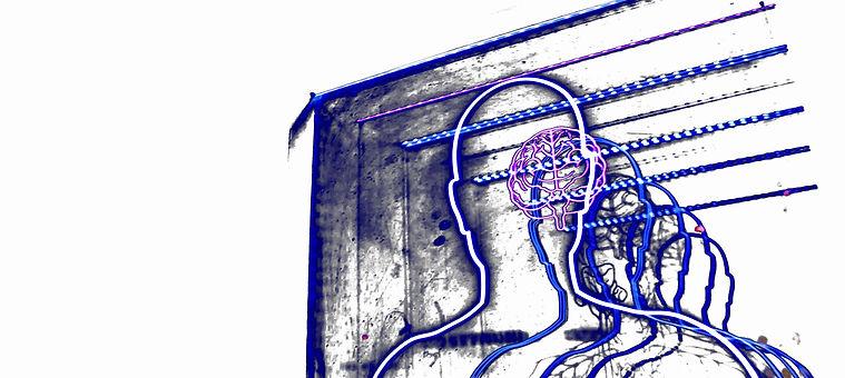 Cerebro humano neuromarketing Laboratori