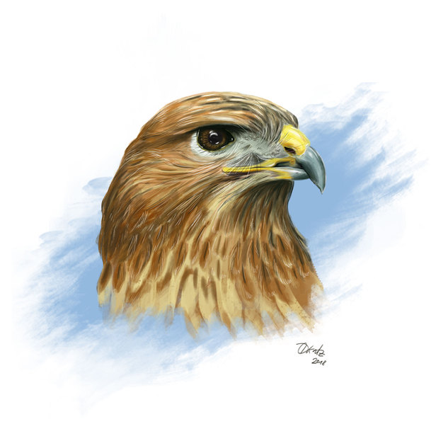 illustration-digital-frankfurt-vogel.jpg