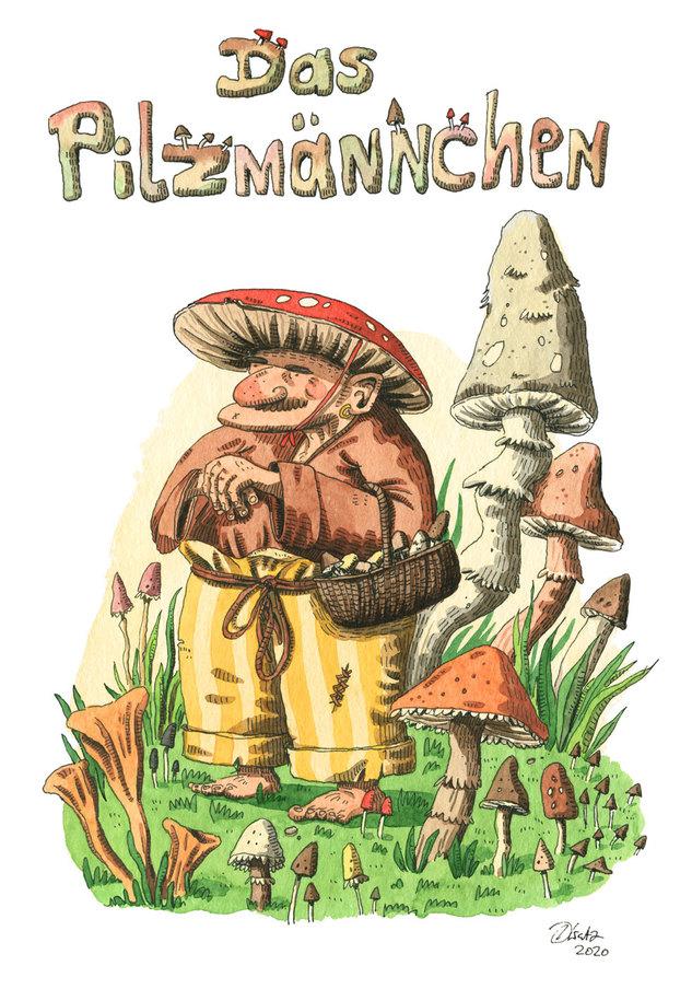 Kinderbuch Pilzsammler