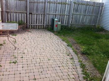 8-backyard.JPG