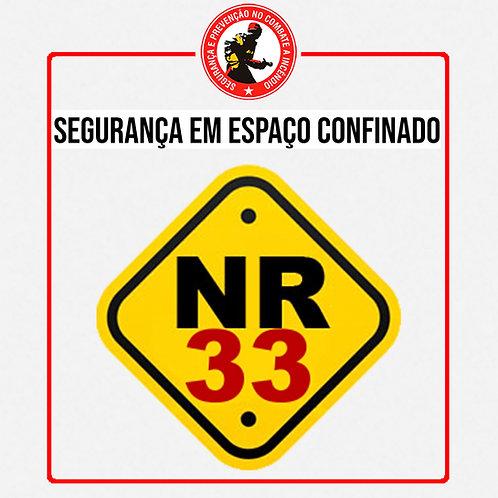 Curso de NR - 33