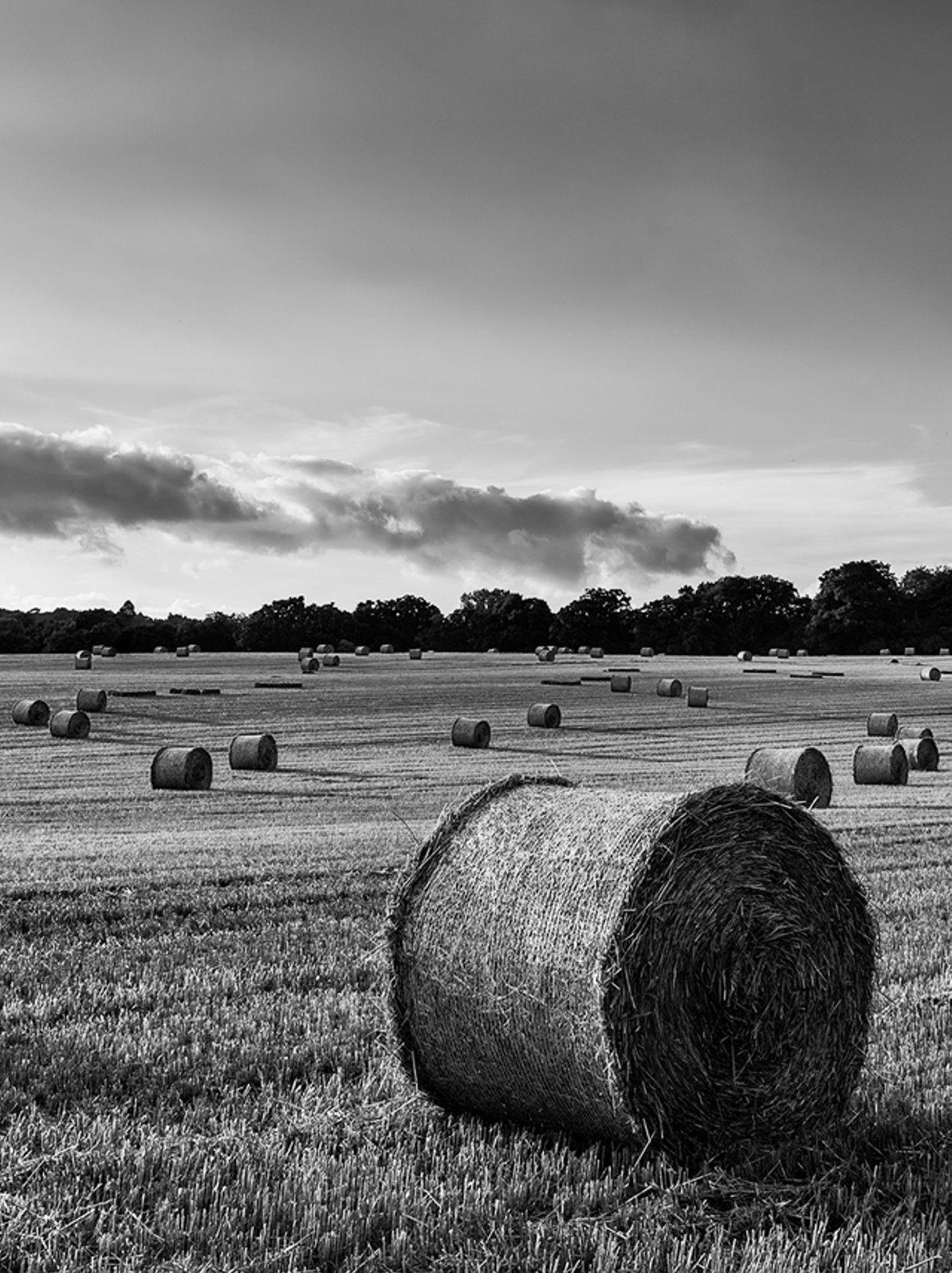 Bullseye Ag Customised Farm Management Solutions
