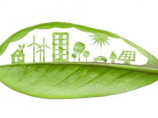 La gestión ambiental: aportando a una comunidad más verde