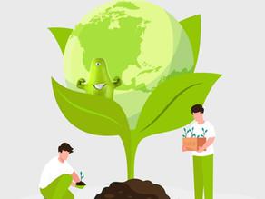 Somos verde