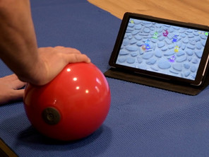 hand exercise ball example 2