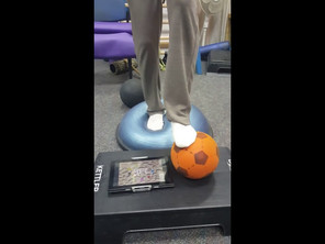 Lower limb bosu with playball therapy exercise ball