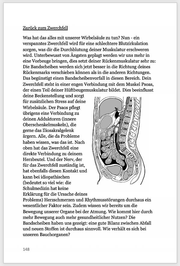Nico Hildebrandt Buch der Gesundheit