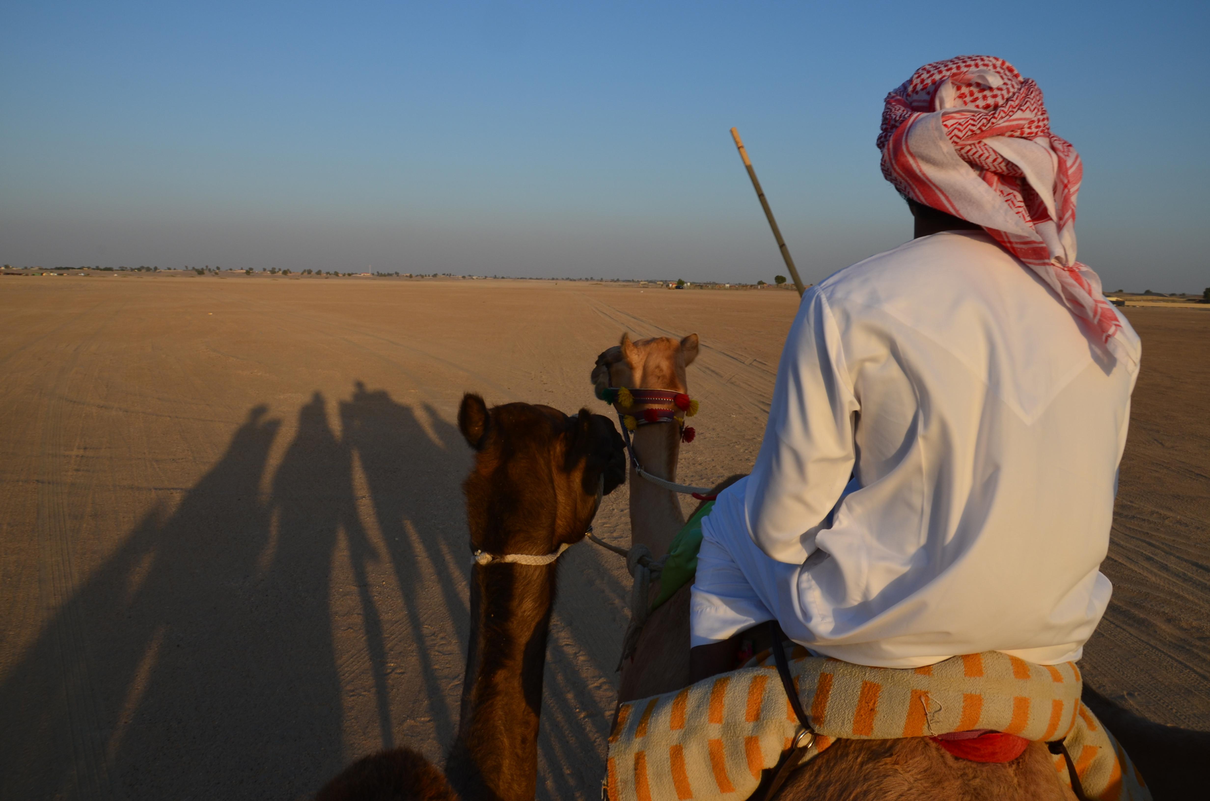 Farm Visit & 60 Min Camel Trek