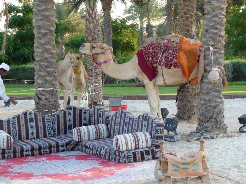 Abu Dhabi 4 170.jpg