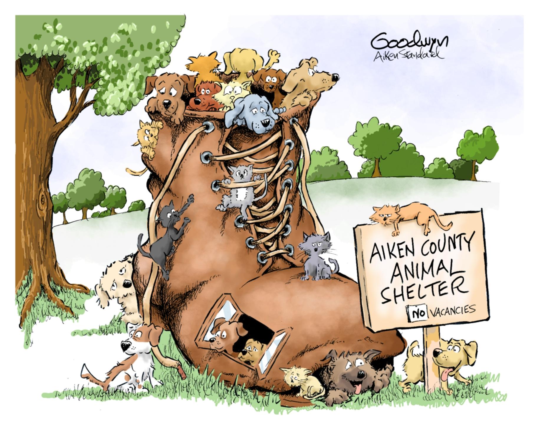 Animal Shelter lr