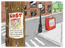 Lost lr