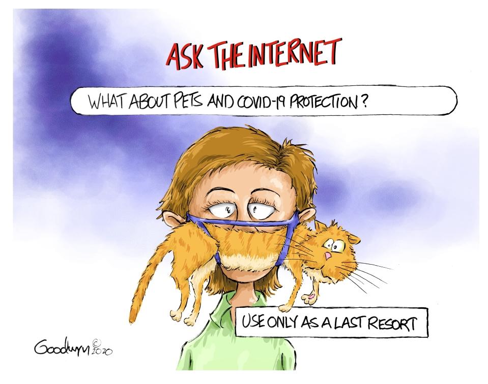 goodwyn Pet Protection vlr 031120