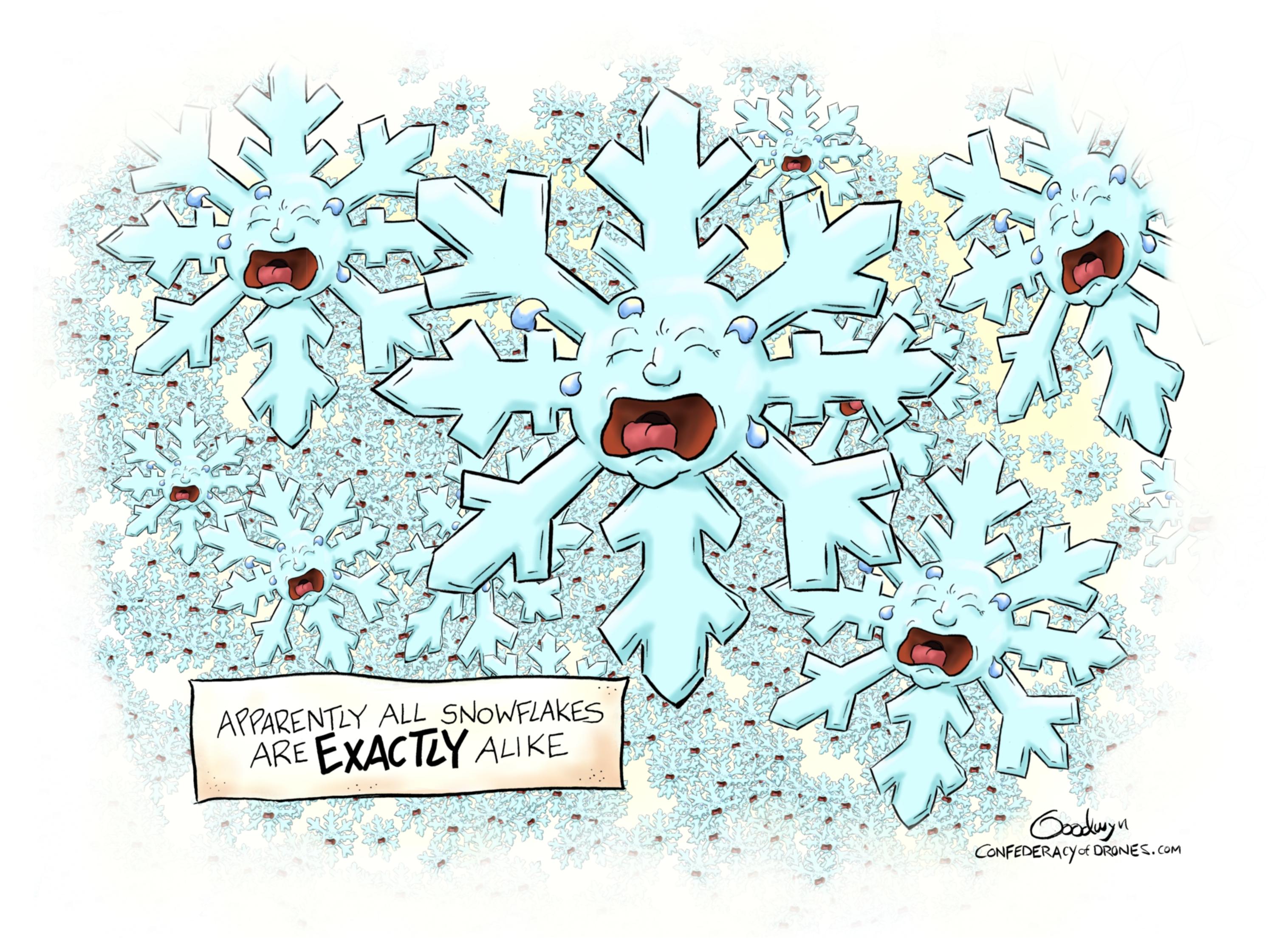 Snowflakes final lr