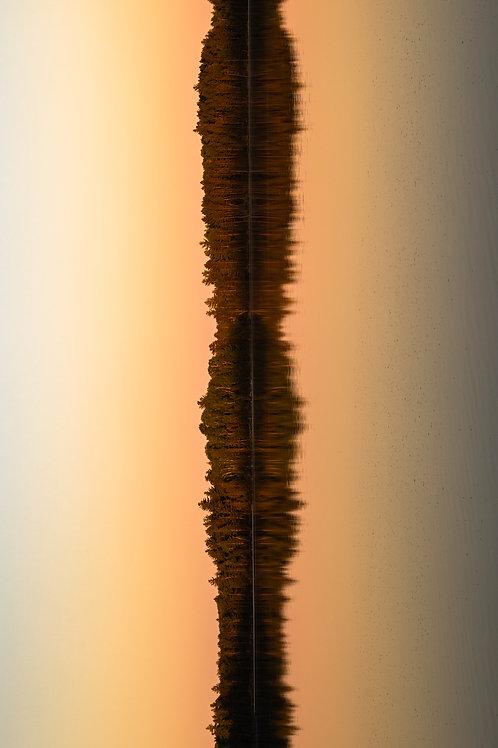 Lake Vibrations