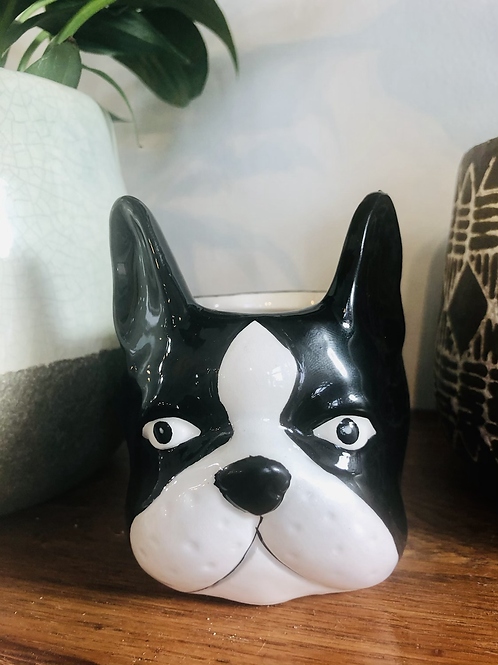 Wee Frenchie Pot