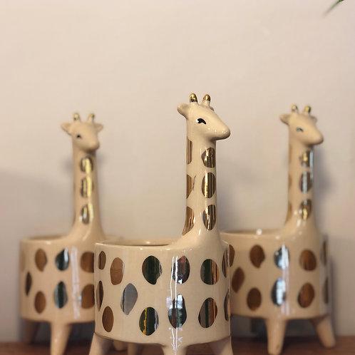 Golden Giraffe Pot