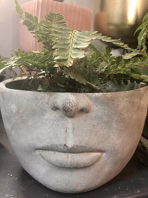 Large Half-Face Planter