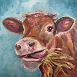 hay_cow copy