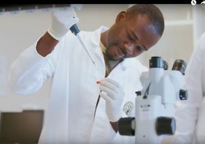Using Genomics, High Performance Computing (HPC) & Mathematics, to fight whiteflies