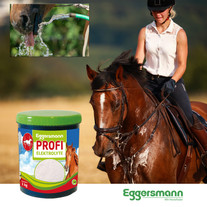 Eggersmann-Profi-Elektrolyte.jpg