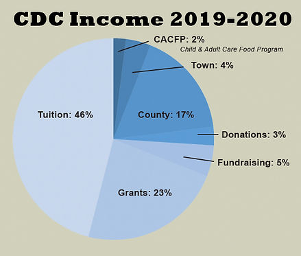 CDC_FY19-20_income.jpg