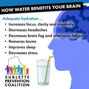 How Water Benefits Your Brain