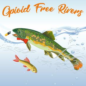 Opioids & the Feminization of Male Fish?