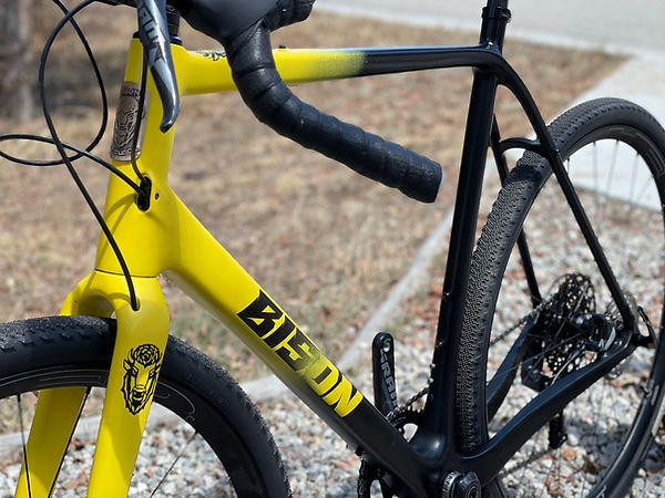Bison Bicycle Co. All Road bike