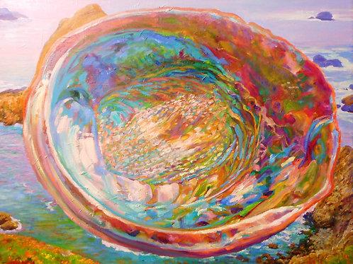 ' Abalone Shell # 12 '
