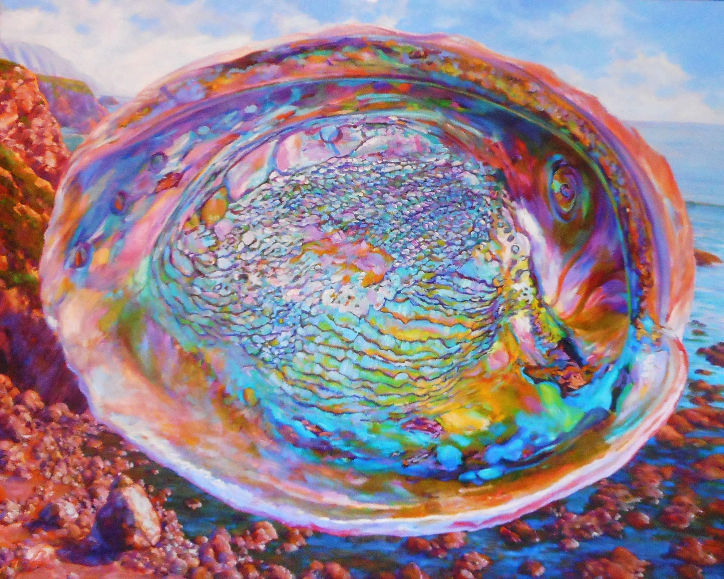 Abalone Shell #11