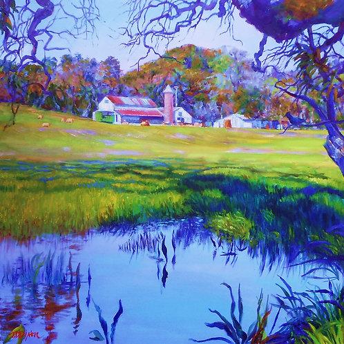 ' Warm Springs Farm '