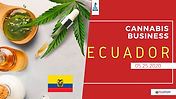 ECUAASSIST CANNABIS BUSINESS IN ECUADOR.