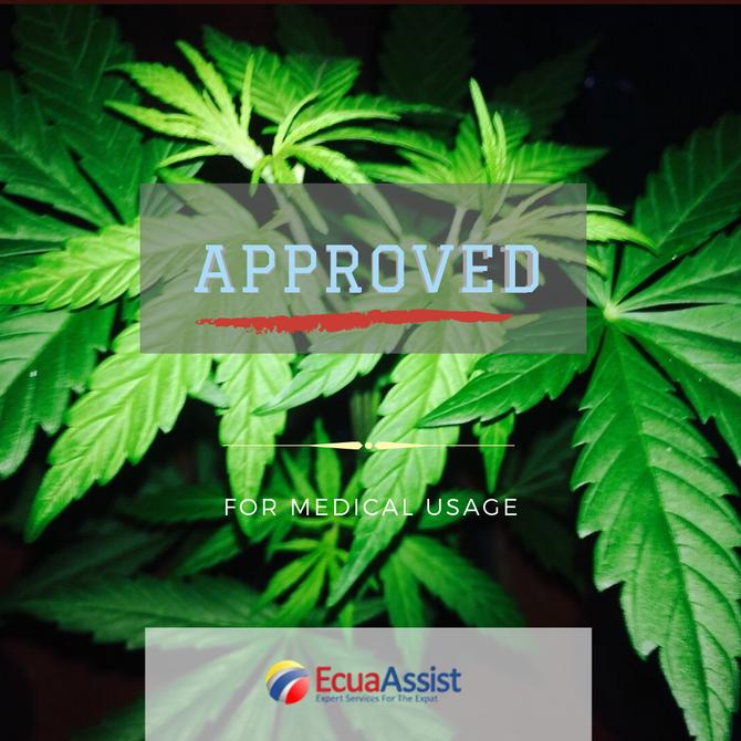 Ecuador Approves -CANNABIS FOR MEDICAL USE-