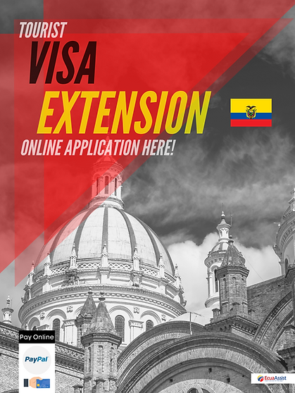 VISA EXTENSION ONLINE APPLICATION.png