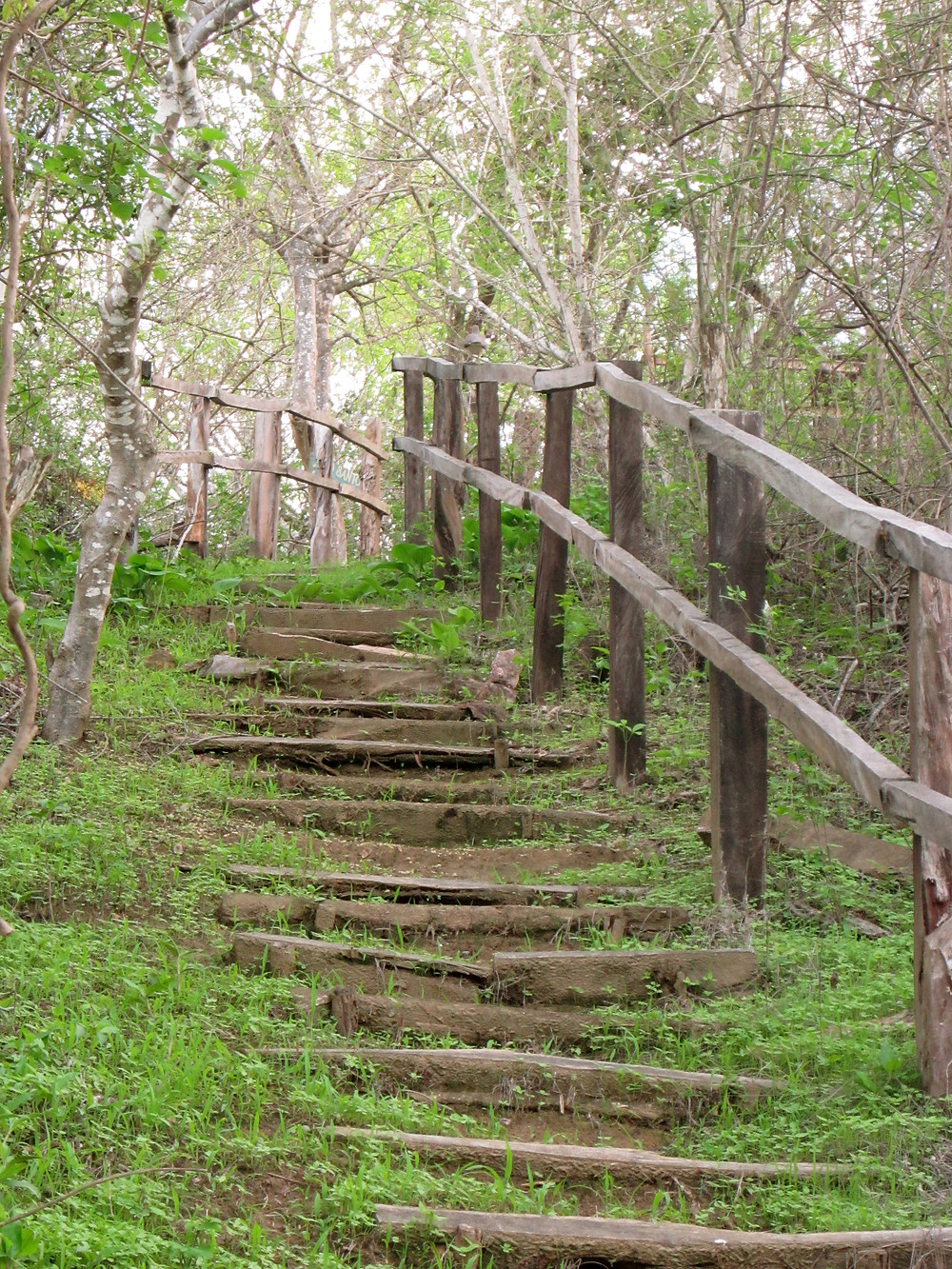 Educational Trail.JPG