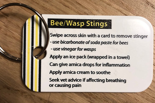 Bee/Wasp Stings key fob