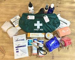 "<img src=""dog first aid kit.jpg"" alt=""Animal Love dog first aid kit"">"