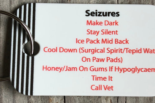 Seizure Key Fob