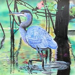 Blue Heron 5
