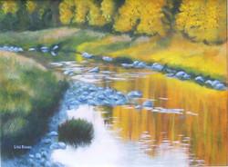 La_rivière_à_Suzor_(rivière_Nicolet,_Arthabaska),_2007
