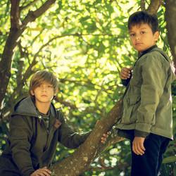 Marcus e Mateus
