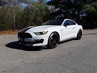 MustangCoatings.jpg