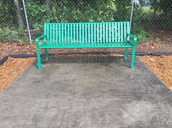 NPO's Green Bench