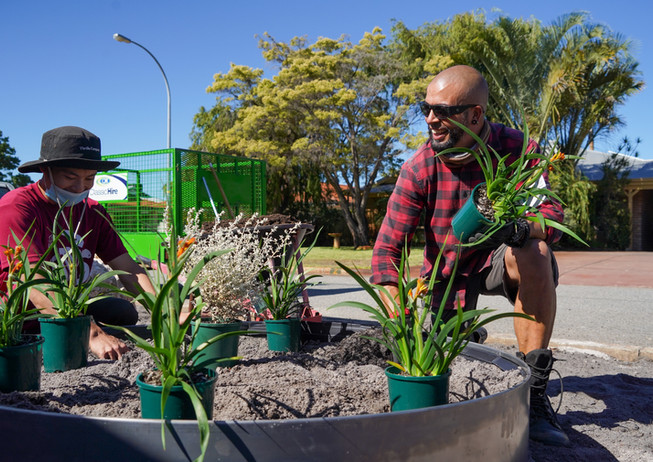 City of Bayswater, Greening Australia Demo Verge Garden