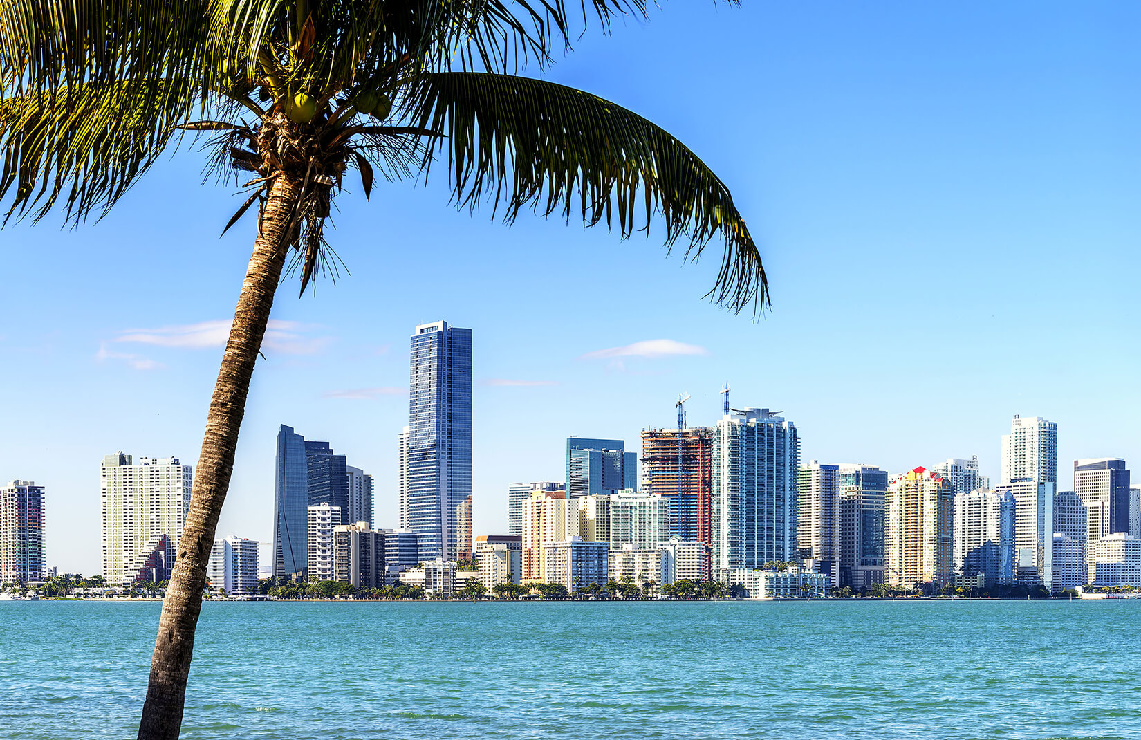 miami-skyline-landscape-plain