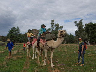 Why should people take part in a camel trek?
