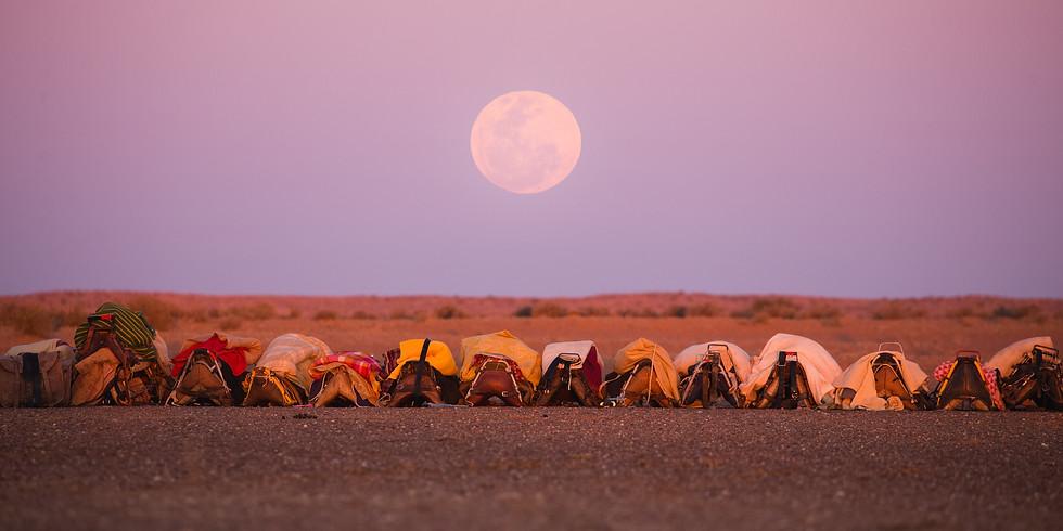 Lake Eyre North, Tirari Desert Expedition, Off theBirdsville Track